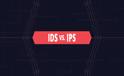 Difference Between IDs and IPs