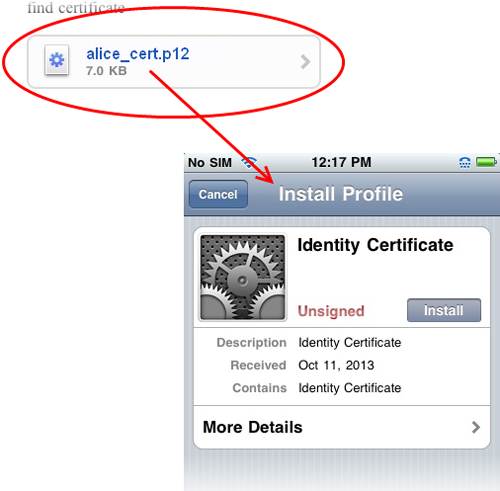 Import your Comodo Personal Authentication Certificate using iPhone