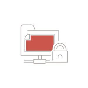 File Security